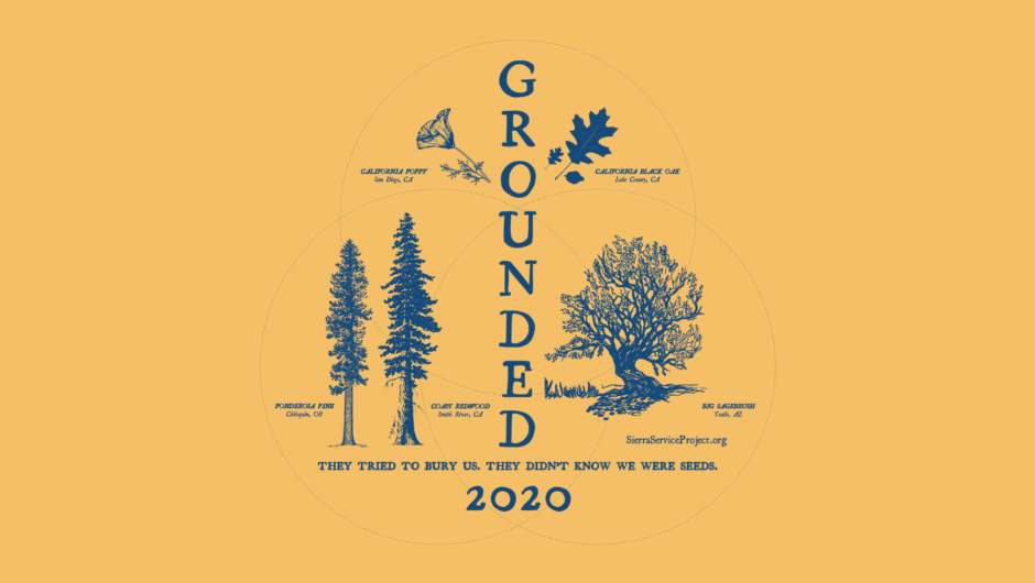 Summer 2020 Theme: Grounded